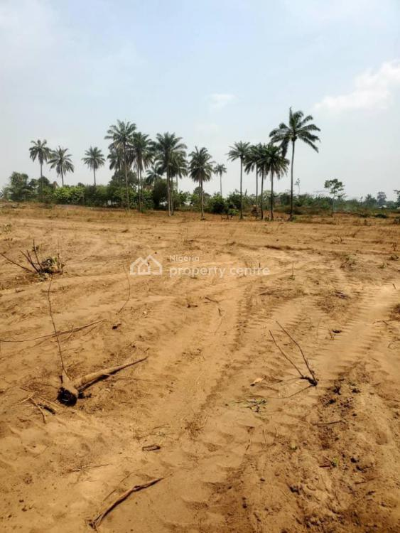 Very Affordable Dry Land, Otunla Community, Off Akanran Road, Olorunsogo, Ibadan, Oyo, Mixed-use Land for Sale