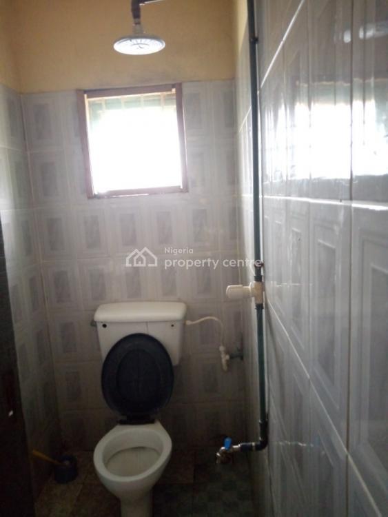 Very Massive & Spacious 1 Bedroom, Off Victor Oluwole Street, Idimu, Lagos, Mini Flat for Rent