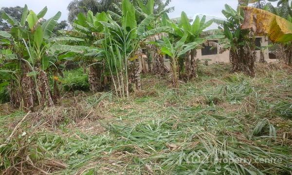 Image result for Akingbele farm lands in ibadan