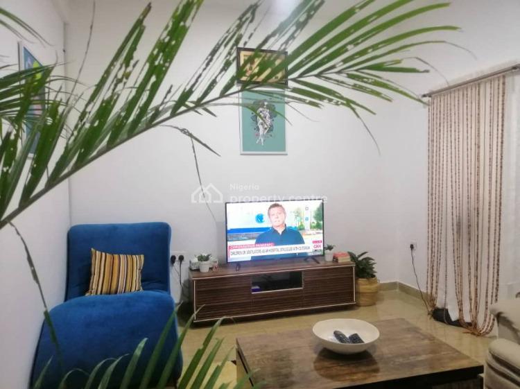 One Bedroom Apartment, Ria Close,bria Street Off Ademola Adetokunbo, Wuse 2, Abuja, Mini Flat Short Let