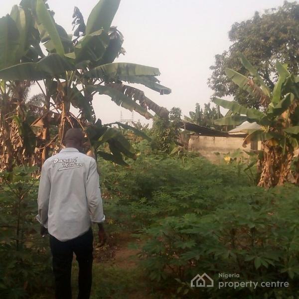 Land, Ikot Ekpene, Akwa Ibom, Commercial Land for Sale