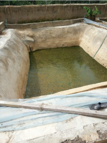 For sale pig farm fish pond available atafegbe village for Used koi pond for sale