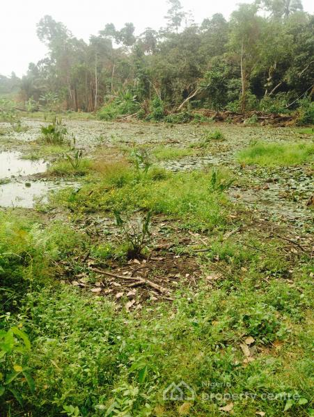 For sale 3580sqm of land for fish pond ilara epe epe for Used koi pond for sale