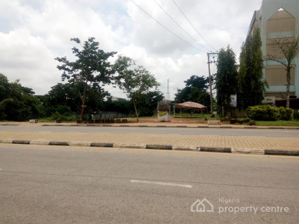 Commercial Plot Within a Prime Location, Central Business District, Abuja, Commercial Land for Sale