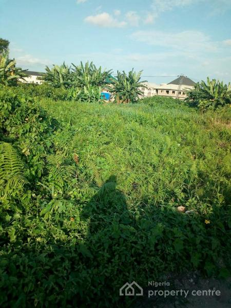a Prime Fenced Land on 32 Acres, Close to New Auditorium Rccg, Mowe Ofada, Ogun, Land for Sale