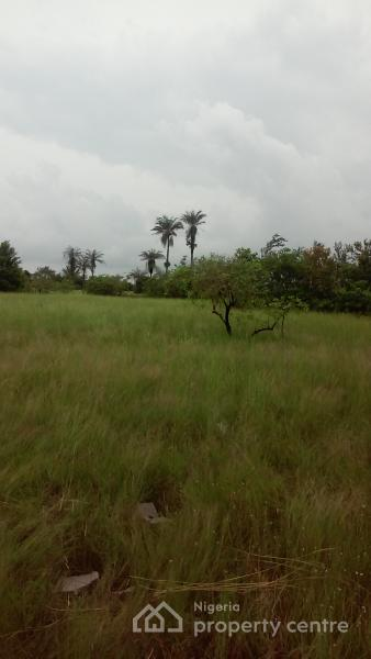 Land Sale, It Is Very Close to Dangote Refinery and Lekki Free Trade Zone. All Other Fees Can Be Paid Later. Call Now., Very Close to Dangote Refinery and Lekki Free Trade Zone, Akodo Ise, Ibeju Lekki, Lagos, Residential Land for Sale