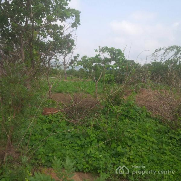 Strategically Located 49 Hectares for Sale.(t), North of, Karsana, Abuja, Residential Land for Sale