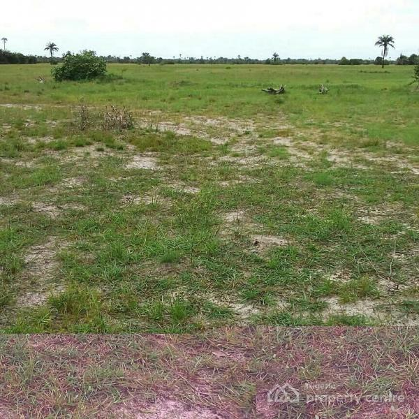 Dry Land, Bare Land, Facing The Road, No Extra Charges. 5 Minutes From Dangote Refinery., 5 Minutes From Dangote Refinery and Lekki Free Trade Zone, Akodo Ise, Ibeju Lekki, Lagos, Residential Land for Sale