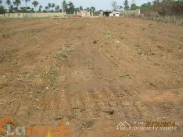 7000sqm Land, Central Business District, Abuja, Commercial Land for Sale