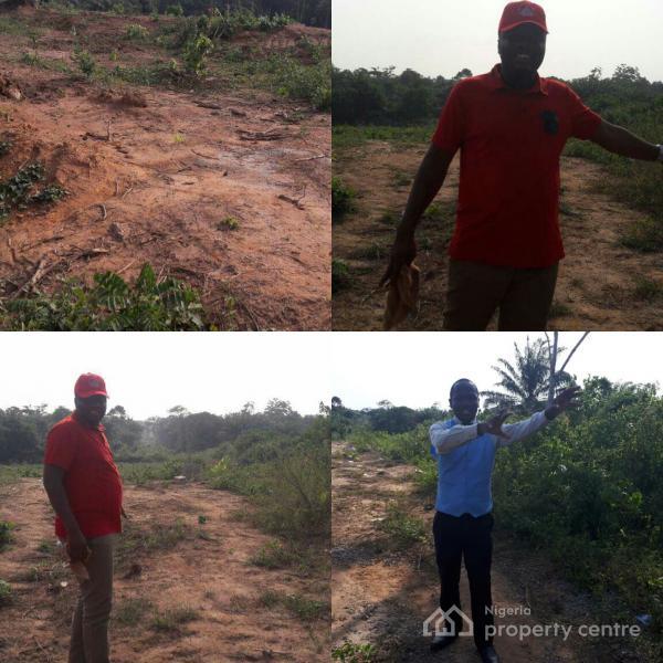 Cheap Plot Of Land ( Buy 5 Get 1 Free)