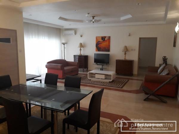 Luxury 1 Bedroom, Banana Island, Ikoyi, Lagos, Semi-detached Duplex for Rent