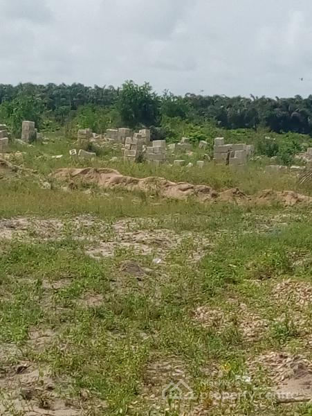 8 Hectares Of Land