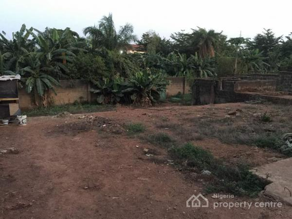 5 Bedroom Duplex with Huge Land at The Back, Constitution Avenue, Gaduwa, Abuja, Detached Duplex for Sale
