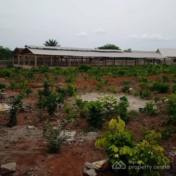 an Acre of Farm Land, Araga Industrial Road, After The Atlantic Hall School, Epe, Lagos, Mixed-use Land for Sale