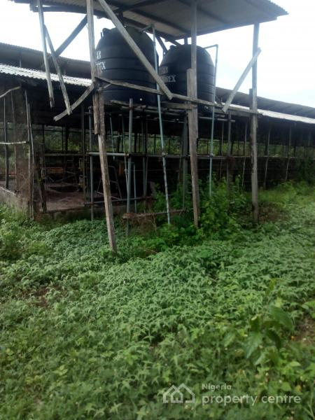 Distress Sale of Massive Poultry Farm  on 10 Acres, Epe, Lagos, Factory for Sale