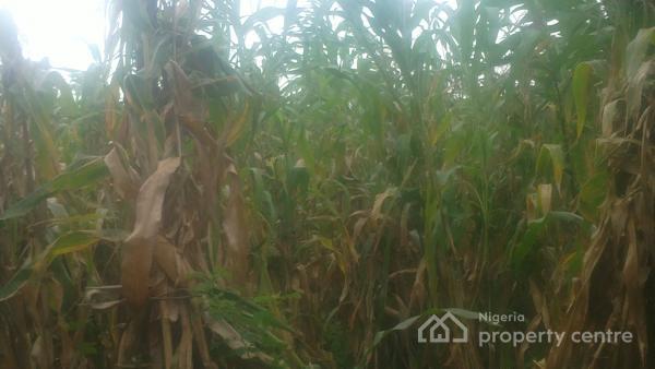 4 Plots of Land, Opposite Ecwa Church (hausa)ungwan Boro, Chikun, Kaduna, Mixed-use Land for Sale