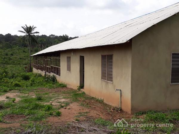 Poultry Farm on 5.5acres of Land, Onidundun Area, Between Ibadan and Fiditi, Ibadan, Oyo, Commercial Property for Sale