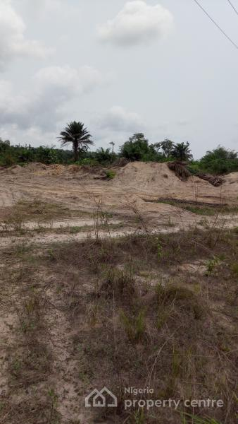 Land Clearing Sponsorship. 100 Acres of Land for Clearing. Get 80 Plots. Title: Excision, Ibeju Lekki, Lagos, Land for Sale
