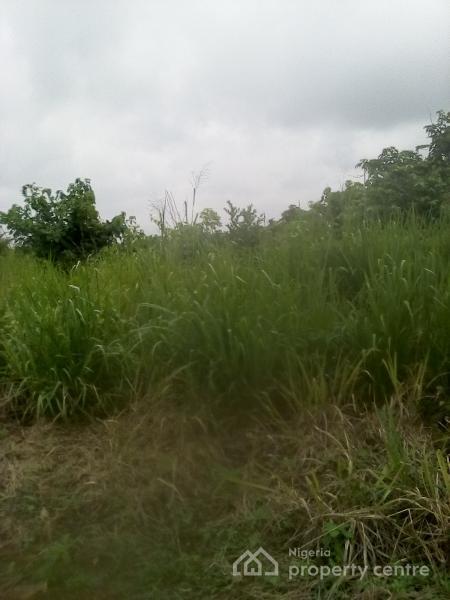 100 Acres of Land, Off Lagos / Ibadan Expressway, Obafemi Owode, Ogun, Land for Sale