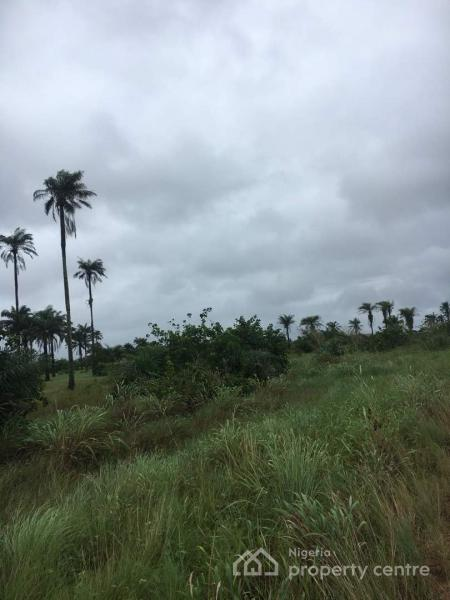 10,000 Acres of Land, Ibeju Lekki, Lagos, Mixed-use Land for Sale