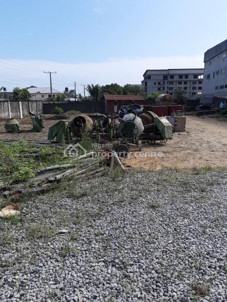 Table Top, Dry 6 Plots of Land, Suitable for Complex, Residential Or Any Other Purpose, Facing Lekki-epe Express Way, Opposite Fara Park, Majek., Lekki Expressway, Lekki, Lagos, Commercial Land for Sale