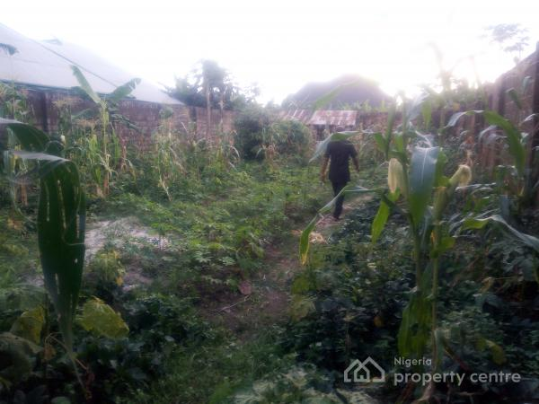 Buy and Build 2 Plots of Land Fence with Gate  Area with Federal Light  Suitable for Residential, Office, Church  Etc., Rupkakolusi, By Eliozu Off East-west Road, Eliozu, Port Harcourt, Rivers, Land for Sale