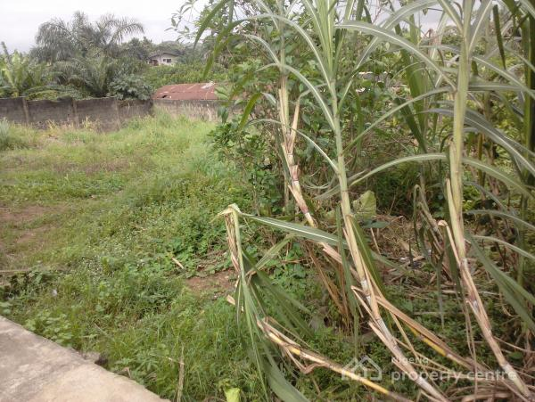 Half Plot of Land with C of O Fence Round, Ojokoro Road, Agric, Ikorodu, Lagos, Mixed-use Land for Sale