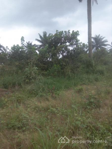 8 Plots of Land in a Strategic Location, Off Eneka-iguruta Road, Eneka, Port Harcourt, Rivers, Residential Land for Sale