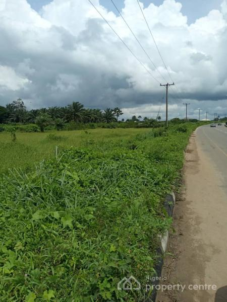 25 Plots of Land, Beside Opm Church Airport Road, Port Harcourt, Rivers, Mixed-use Land for Sale
