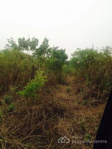 Acres of Dry Agricultural Land, Mojoda. Odogbawojo, Epe, Lagos, Commercial Land for Sale