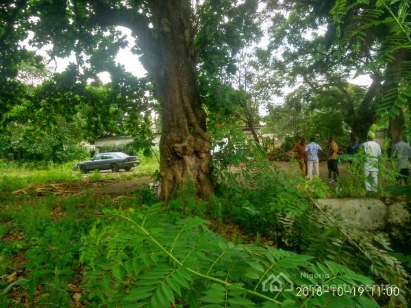 Land, Second Avenue, Old Ikoyi, Ikoyi, Lagos, Mixed-use Land for Sale
