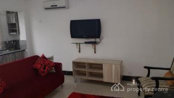 Furnished 1 Bedroom Apartment, Old Ikoyi, Ikoyi, Lagos, Mini Flat Short Let