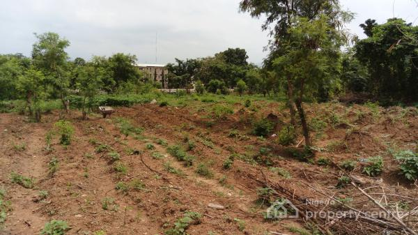 4155sqm Undeveloped Land, Along Sultan Abubakar Way, Wuse Zone 5, Wuse, Abuja, Commercial Land for Sale