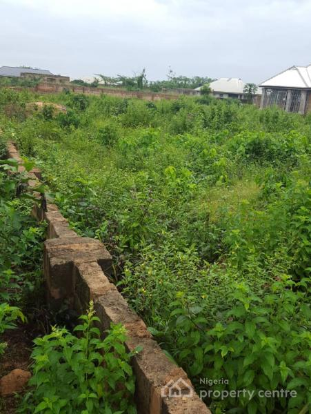 100ft By 100ft [929.03sqm] Plot of Land @ Upper Mission Extension, Uteh. Benin City., Upper Mission Extension, Benin, Oredo, Edo, Mixed-use Land for Sale