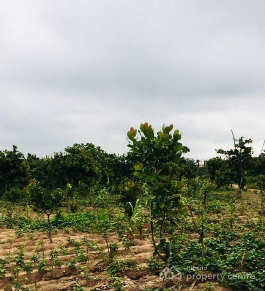 Plot of Land with C of O, Future Homes, Kuchiyako Phase 4, Centenary City Axis, Kuje, Abuja, Mixed-use Land for Sale
