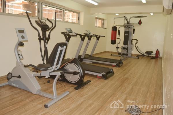 Luxury 2 Bedroom Flats with Excellent Facilities, Offligali Ayorinde, Victoria Island (vi), Lagos, Flat for Rent