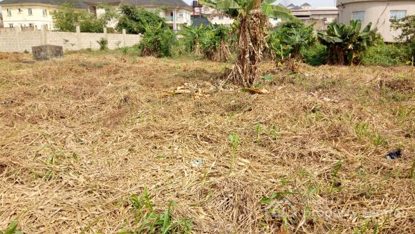 Fully Dry and Well Located 500 Square Metres Land, Omole Phase 2, Ikeja, Lagos, Residential Land for Sale
