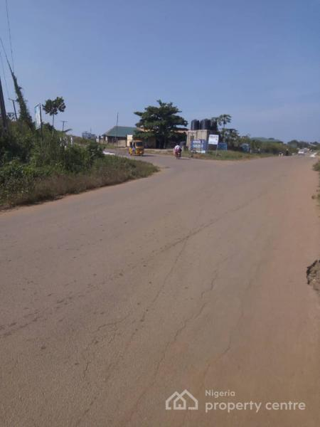 10,000 Acres of Farm Land, Along Iwo/ibadan Road, Aiyedire, Osun, Commercial Land for Sale