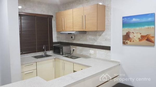 Furnished and Luxury Finished 1 Bedroom Flat, Wuse 2, Abuja, Flat Short Let