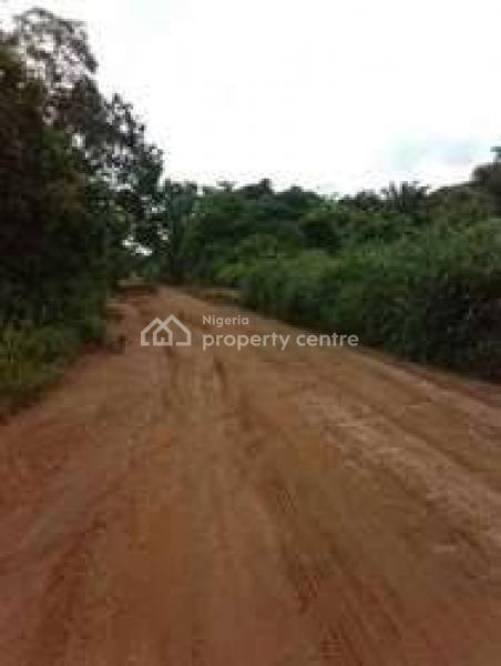 Virgin Land, Odo-egiri, Epe, Lagos, Mixed-use Land for Sale