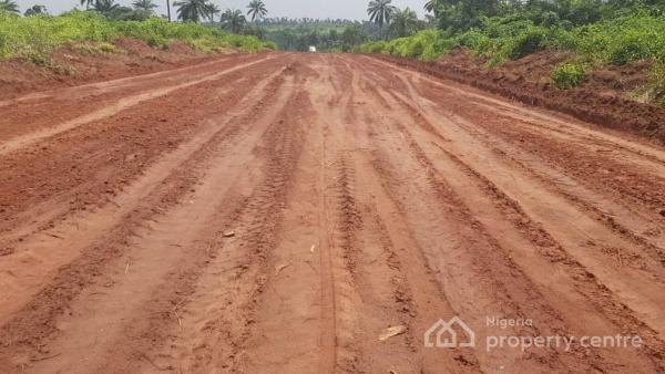 5,000 Acres of Land with Cheaper Price, Ipapo Town Itesiwaju Lg,   Just 15 Minutes Drive From The Expressway, Itesiwaju, Oyo, Commercial Land for Sale