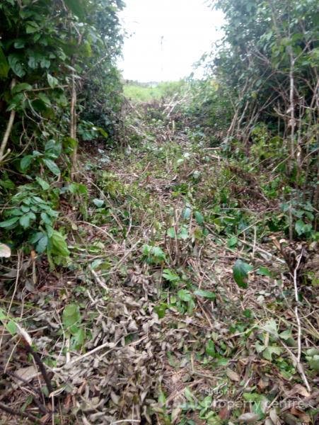 Land, Odorangunshi Town, Epe, Lagos, Mixed-use Land for Sale