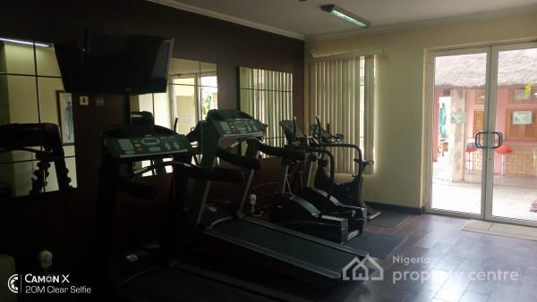 World Class Standard Finished Luxury Furnished 2 Bedrooms with Bq, Aguiyi Ironsi, Maitama District, Abuja, Flat for Rent