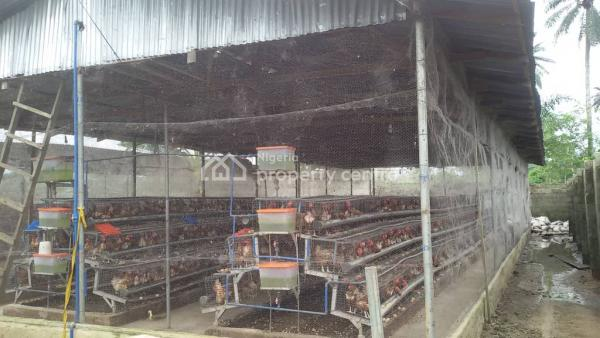 a Poultry Farm with Standard Equipment, Omagwa, Port Harcourt, Rivers, Commercial Property for Sale