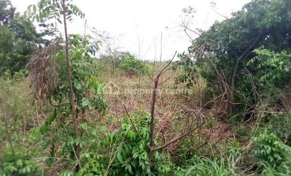 Acres of Dry Commercial /industrial Land, Shagamu- Benin Expressway, Ososa, Ijebu Ode, Ogun, Industrial Land for Sale