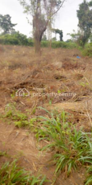 An Acre Of Agricultural Land At Atan