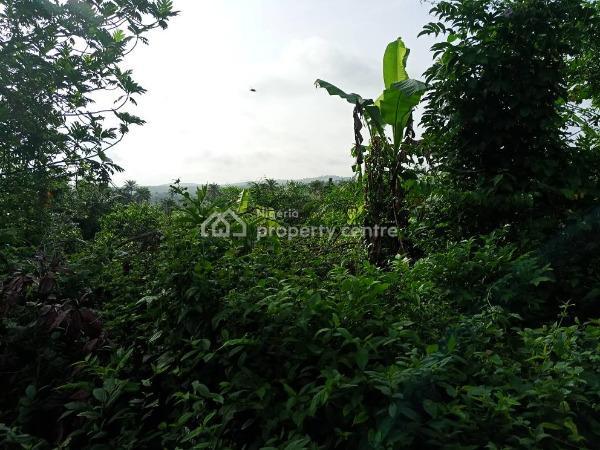 1.2 Acres of Fertile Farmland  at Akanran, Olode Village Off Akanran Road, Ona Ara Local Government, Ibadan, Oyo, Commercial Land for Sale