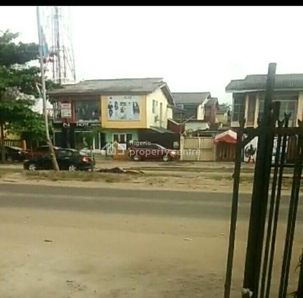 Exquisite Two Full Plots of Land for Sale at Festac, Second Avenue, Festac, Isolo, Lagos, Mixed-use Land for Sale