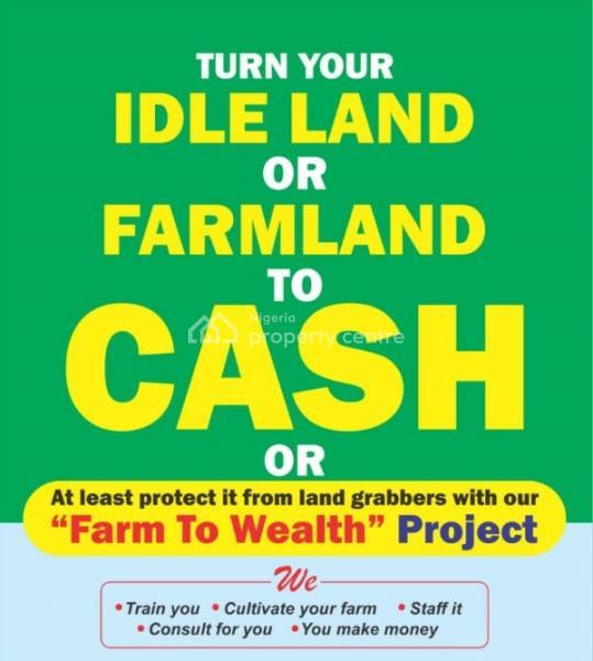 Plantain Farm Estate, Ojodu, Lagos, Commercial Property for Sale