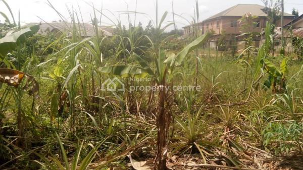 Standard  Dry Land Plot 50 By 30 in Good Location, Akesan, Igando, Ikotun, Lagos, Residential Land for Sale